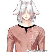 Image of Usagi-san