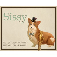 Image of Sissy