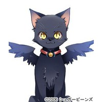 Image of Kyle (cat form)