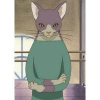 Image of Mr. Cat