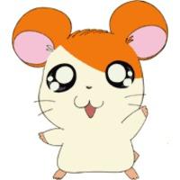 Profile Picture for Hamtaro