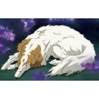 Akizuki's puppy