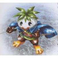 Image of Turnip / Kabu