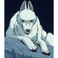 Profile Picture for Moro