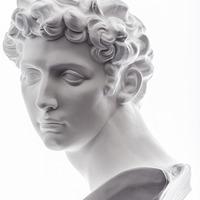 Image of Medici